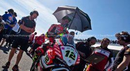 WSBK: Xavi Forés renueva para 2017 con el Barny Racing Team
